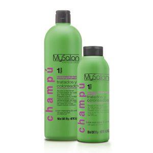 hair-shampoo-and-mesh-hair-salon
